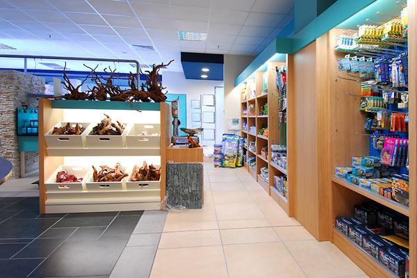 Aquarium 2000 acquari e pesci tropicali castel mella for Vendita pesci